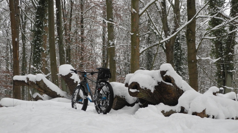 Silvesterrunde im Schnee – Feld – Wald – Wiesen –Hügel