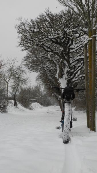 wintermorgen-385