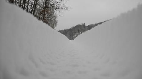 wintermorgen-403