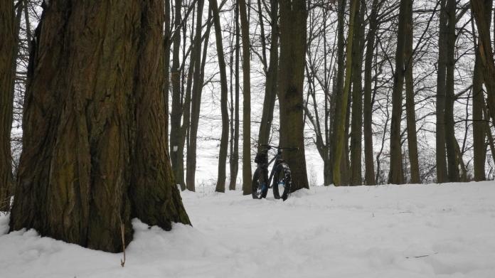 neujahr-schnee-782
