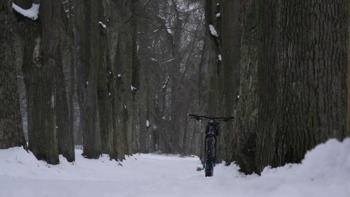 neujahr-schnee-801