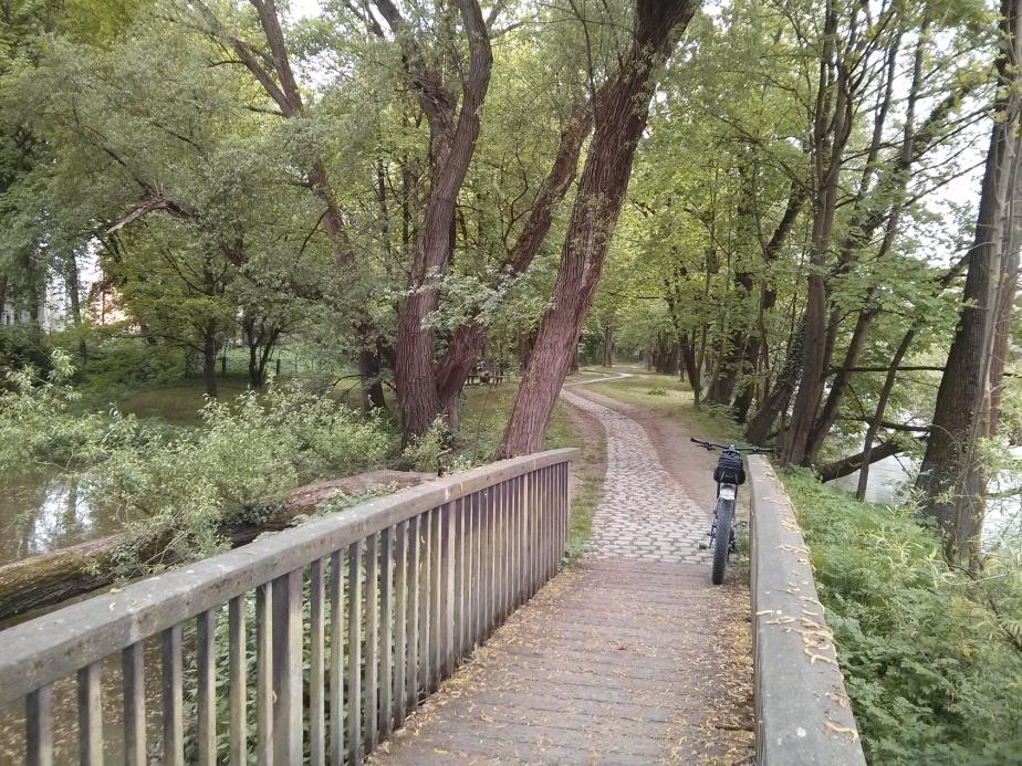 Am Ufer des Donaunordarms mitten in derStadt