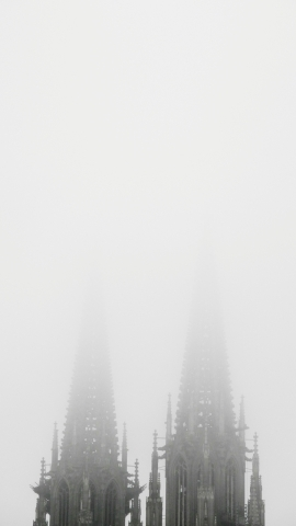 nebel-61