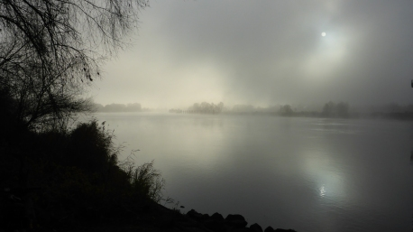nebel-sonne-580