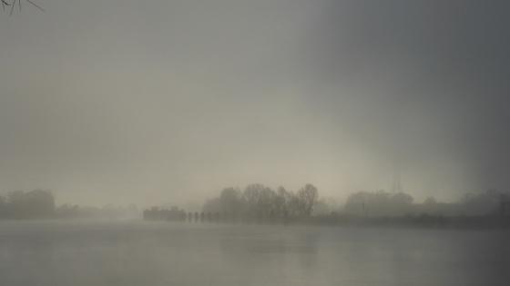nebel-sonne-582