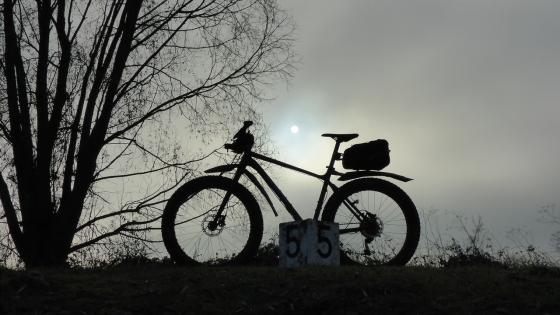 nebel-sonne-595