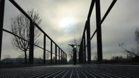 nebel-sonne-614