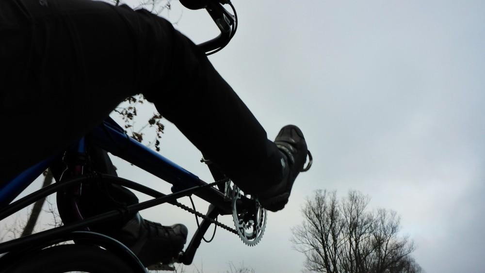 Entspannte Fahrt mit dem gebrochenen Vorderhuf (2/6)