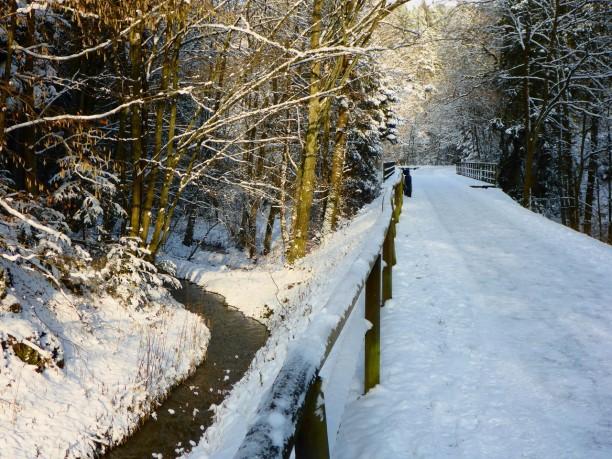 falkensteinradweg-schnee-658