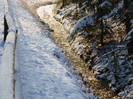 falkensteinradweg-schnee-659