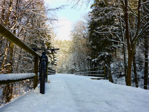 falkensteinradweg-schnee-661