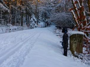falkensteinradweg-schnee-692