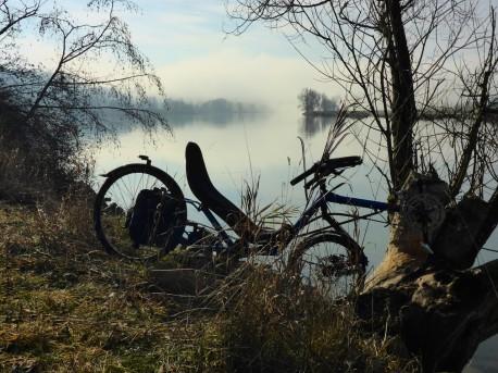 nebel-sonne-643