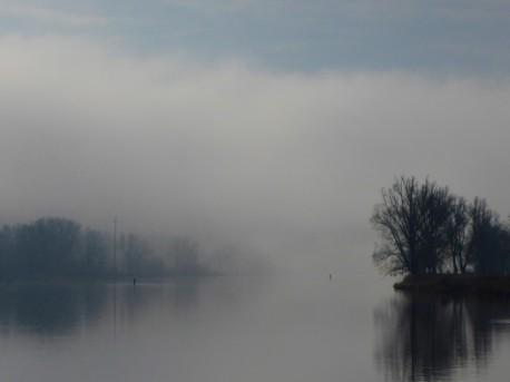 nebel-sonne-644