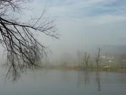 nebel-sonne-658