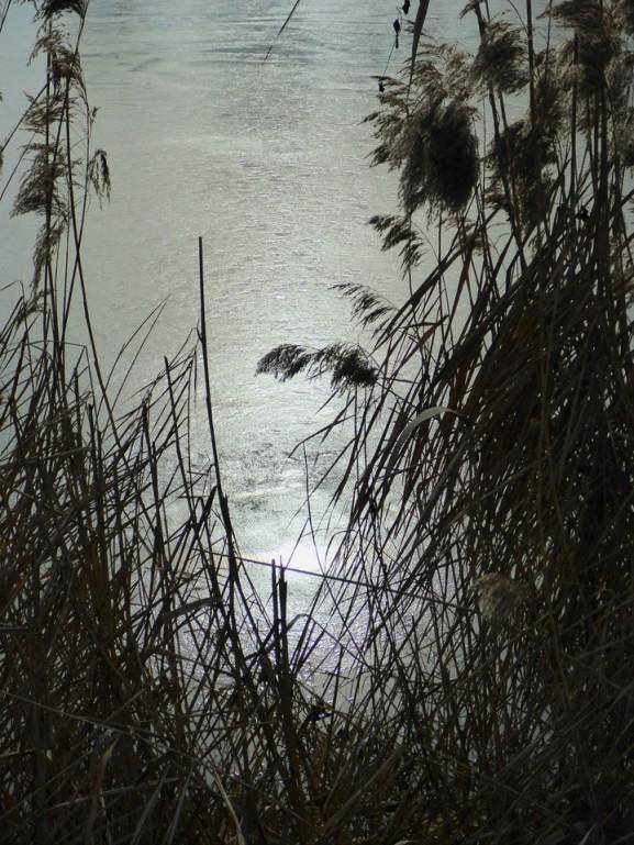 nebel-sonne-670
