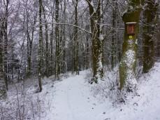 schnee-eis-jurasteig-41