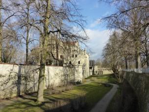 fruehling-im-winter-430