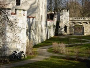 fruehling-im-winter-431