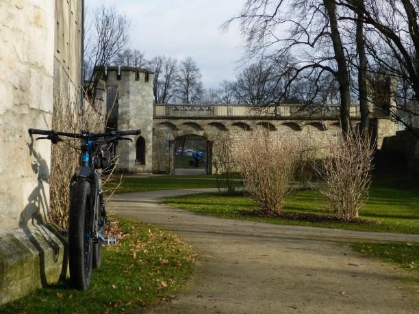 fruehling-im-winter-437