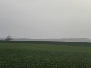 fruehling-im-winter-487