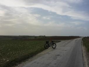fruehling-im-winter-522