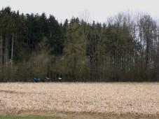 passau-regensburg-738