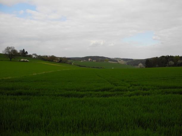 hinterberg-814