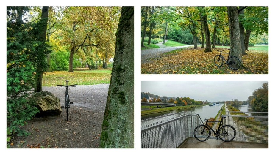 Mit Viktor durch den Stadtpark in die City