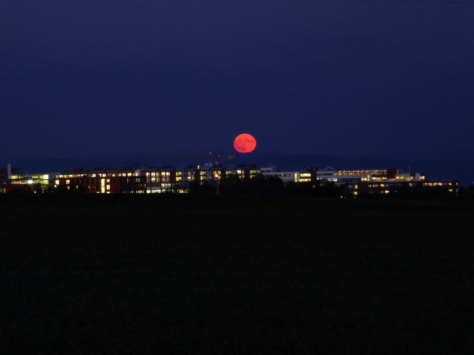 Viktor bestaunt den Mond