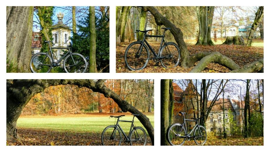 Viktor, Sonn(en)tag, alte Bäume und Gemäuer