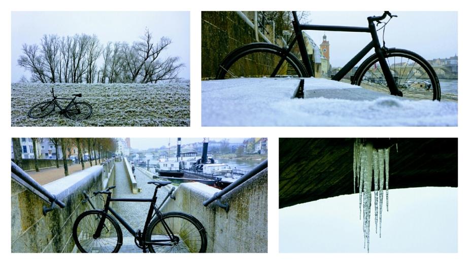 Viktor bei Hochnebel und Frost