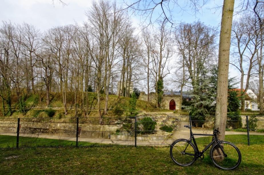 Viktor und der verschlossene Park