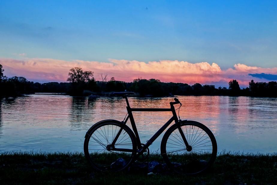Viktor und allerlei Eindrücke an der Donau