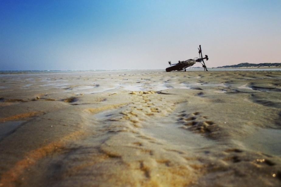 Das Fette in den Dünen und eine besondere Begegnung amMeer