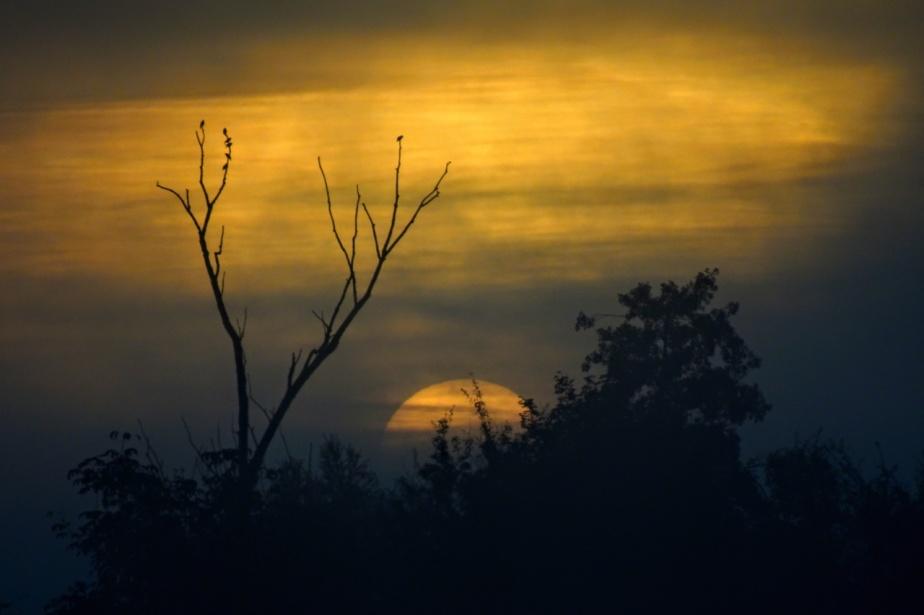 Sonnenaufgang und fette Nachmittagsrunde